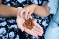 2die4 Live Foods Activated Tamari Almonds.jpg